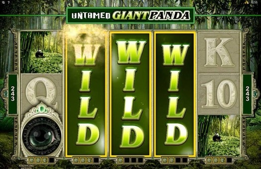 Ігровий автомат Untamed Giant Panda - грати онлайн в слот безкоштовно, без реєстрації та смс повідомлень.Арсеньев