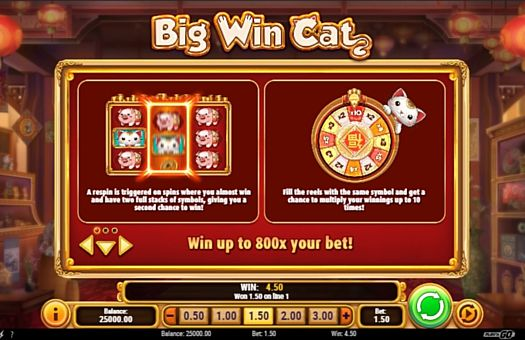 Правила респінів в грі Big Win Cat