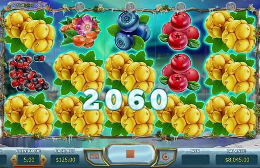 Виграшна комбінація в ігровому автоматі Winterberries