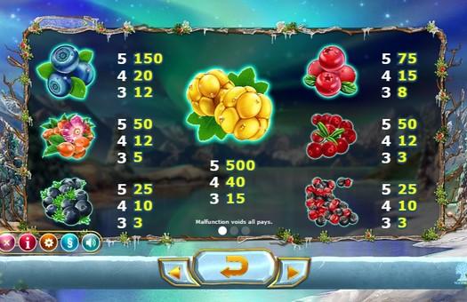 Таблиця виплат онлайн автомата Winterberries